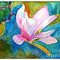 Summer Magnolia by Sarabjit Kaur