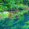 Summer Monet Reflections by Laura D Young
