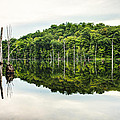 Summer Morning On Monksville Reservoir 2 by Gary Heller