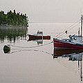 Summer Morning Stillness by Marty Saccone