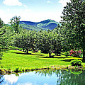 Summer Pond And The Blueridge by Duane McCullough