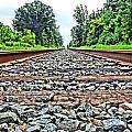 Summer Railroad Tracks by Dan Sproul
