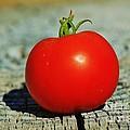 Summer Red Tomato by Robert D  Brozek