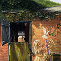 Summer Reflection by Timothy  Easton