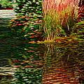 Summer Reflections by Ellen Cannon