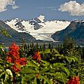 Summer Scenic Of Grewingk Glacier And by Bill Scott