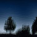 Summer Silhouette by Margie Hurwich