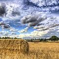 Summer Straw Bales by David Pyatt