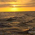 Summer Sunset by Loretta Jean Photography