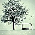 Summer Swing Abandoned In Snow Beside Tree by Sandra Cunningham