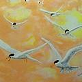 Summer Terns by Rich Mason
