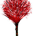 Summer Tree Painting Isolated by Simon Bratt Photography LRPS