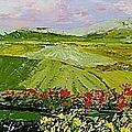 Summer Valley by Allan P Friedlander