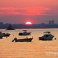 Late Summer Sunset Over The Bay by Dora Sofia Caputo Photographic Design and Fine Art