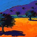 Summertime by Paul Powis