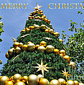 Summertime Christmas With Text by Kaye Menner