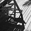 Summertime Shadows by Cheryl Miller