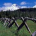 Summit Meadow by Ken Dietz