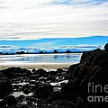 Sumner Beach by Willinda Swart