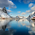 Sun And Ice Reinefjord by Richard Burdon