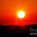 Sun Blast Over Whidbey Island Washington State by Tap On Photo