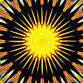 Sun Burst by Barbara Snyder