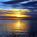 Sun Down South by Faith Williams