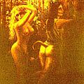 Sun Glimpse Of Wood Nymphs by Genio GgXpress