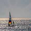 Sun Glitter by Debi Haseley