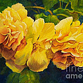Sun Kissed Yellow Begonias by Michele Thorp