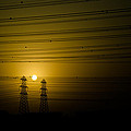 Sun by Oliver Kilaton