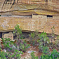 Sun Point Pueblo View-12-1300 Ad  On Chapin Mesa Top Loop Road In Mesa Verde National Park-colorado  by Ruth Hager