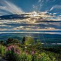 Sun Rays  by Andrew Matwijec