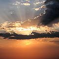 Sun Rays by Darcy Tate