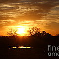 Sun Setting Over The Pond by Kathy  White