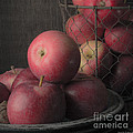 Sun Warmed Apples Still Life Square by Edward Fielding