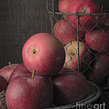 Sun Warmed Apples Still Life Standard Sizes by Edward Fielding