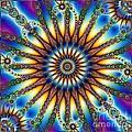 Sun Wheel 2 by Elizabeth McTaggart