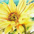 Sun Worshipper by Ruth Harris