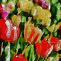 Sunbathing Tulips by Angelina Vick