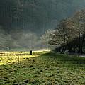 Sunbeams And Mist - Wolfscote Dale by Rod Johnson