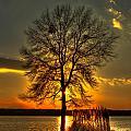 Sunblock A Sunset On Lake Oconee by Reid Callaway