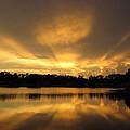 Sunburst Reflection by Zina Stromberg
