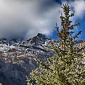 Sundance Aspen-utah V2 by Douglas Barnard