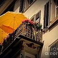 Sunday Afternoon Siesta In The City by Susanne Van Hulst