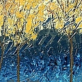 Sundrenched Trees by Linda Bailey
