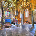 Sunfilled Cathedral by Christine Czernin Morzin