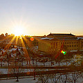 Sunflare At The Museum by Alice Gipson