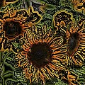 Sunflower 18 by Pamela Cooper