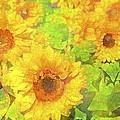 Sunflower 19 by Pamela Cooper